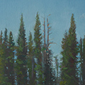 "Tuolumne 1, Oil on Canvas 18""x36"""
